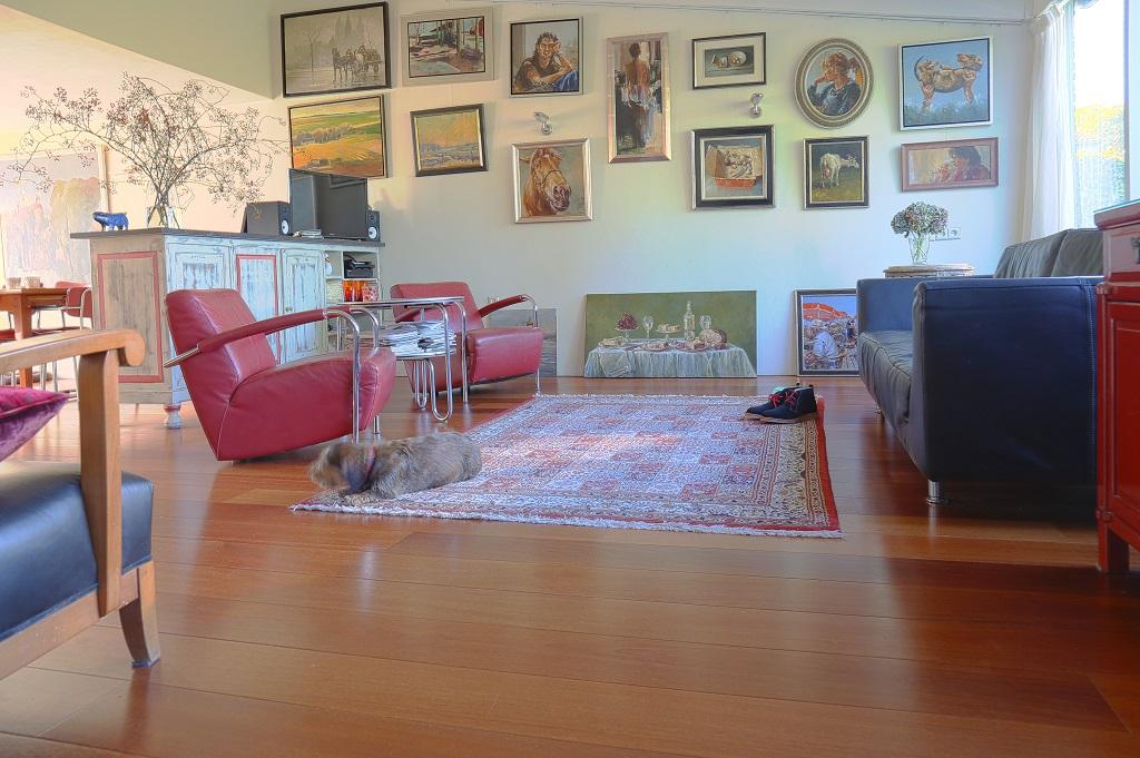 Een hond in een huis met een houten vloer, het kan gewoon!